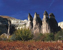 Natural formations called the Fairy Chimneys in Cappadocia